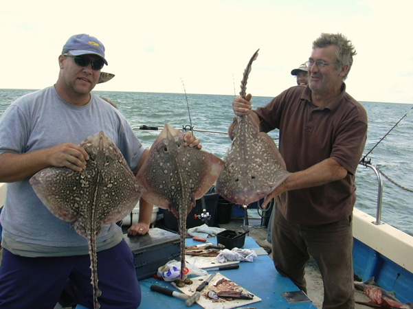 Skate Fishing with Chris Mole Charters